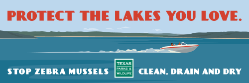 Stop Zebra Mussels!  Clean, drain and dry